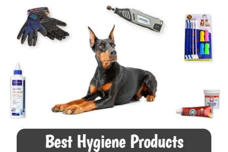 Best Hygiene Products