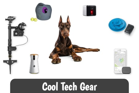 Cool Tech Gear and Gifts for Doberman Owners