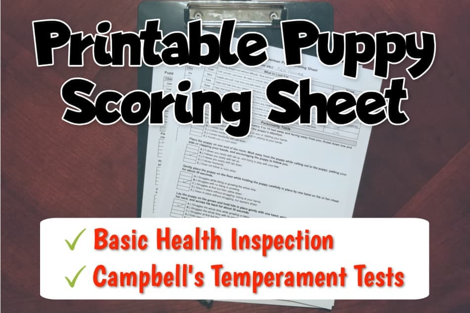 Printable Puppy Personality and Temperament Tests (Campbell's Test)