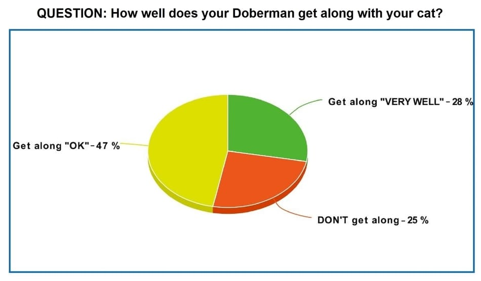 Dobermans with Cats Owners Poll