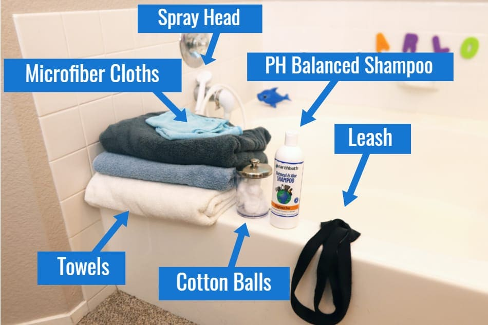 Items You'll Need to Bathe Your Doberman