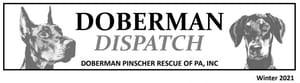 Doberman Dispatch Newsletter Header Image