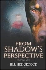 "A picture of the cover of the book ""From Shadow's Perspective."""